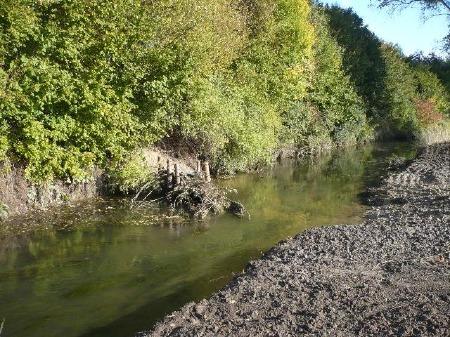 Strömungslenker zur Entwicklung der Eingendynamik des Flusses